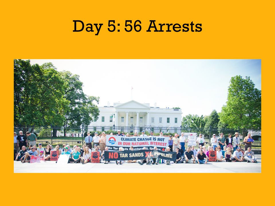 Day 5: 56 Arrests