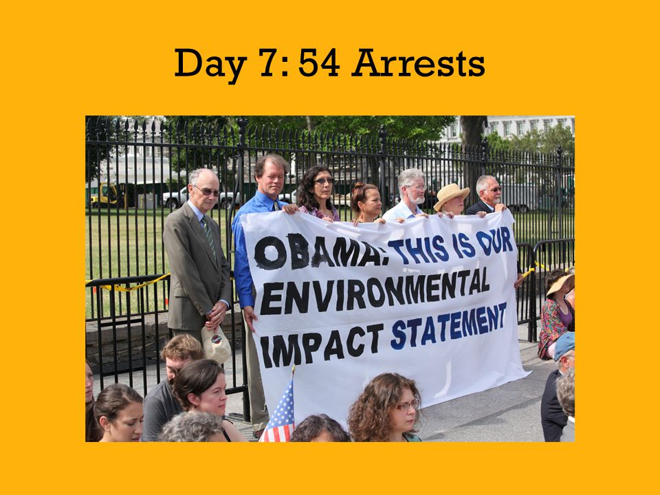 Day 7: 54 Arrests