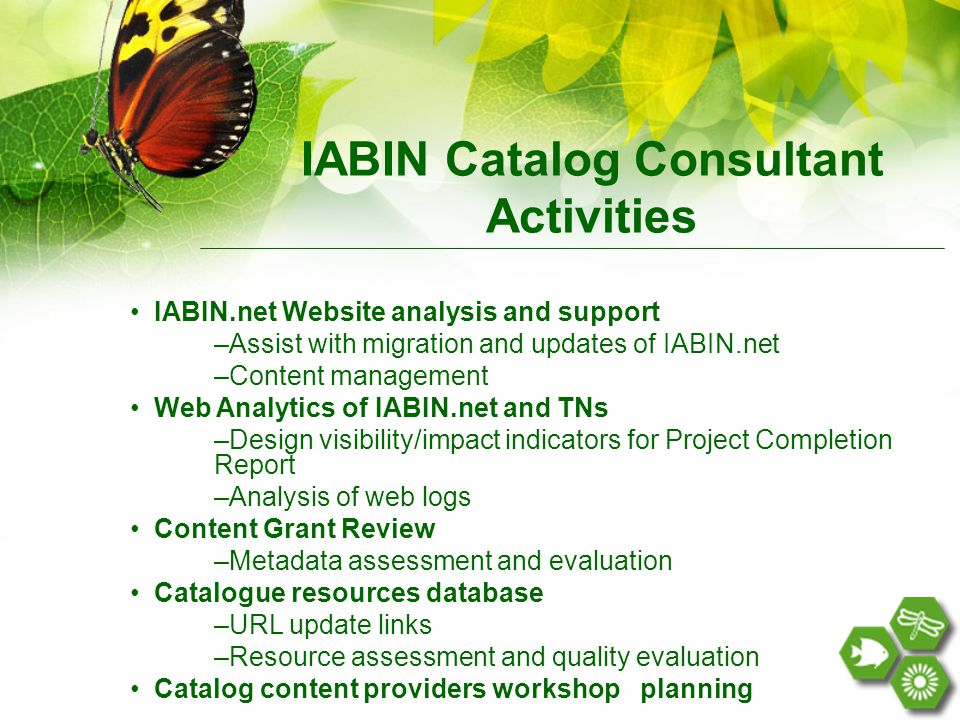 IABIN.net Website analysis and support –Assist with migration and updates of IABIN.net –Content management Web Analytics of IABIN.net and TNs –Design visibility/impact indicators for Project Completion Report –Analysis of web logs Content Grant Review –Metadata assessment and evaluation Catalogue resources database –URL update links –Resource assessment and quality evaluation Catalog content providers workshop planning IABIN Catalog Consultant Activities