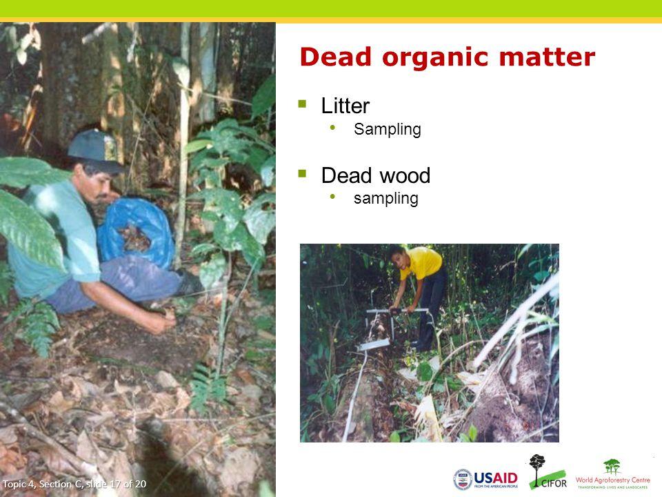 Dead organic matter  Litter Sampling  Dead wood sampling 17 Topic 4, Section C, slide 17 of 20