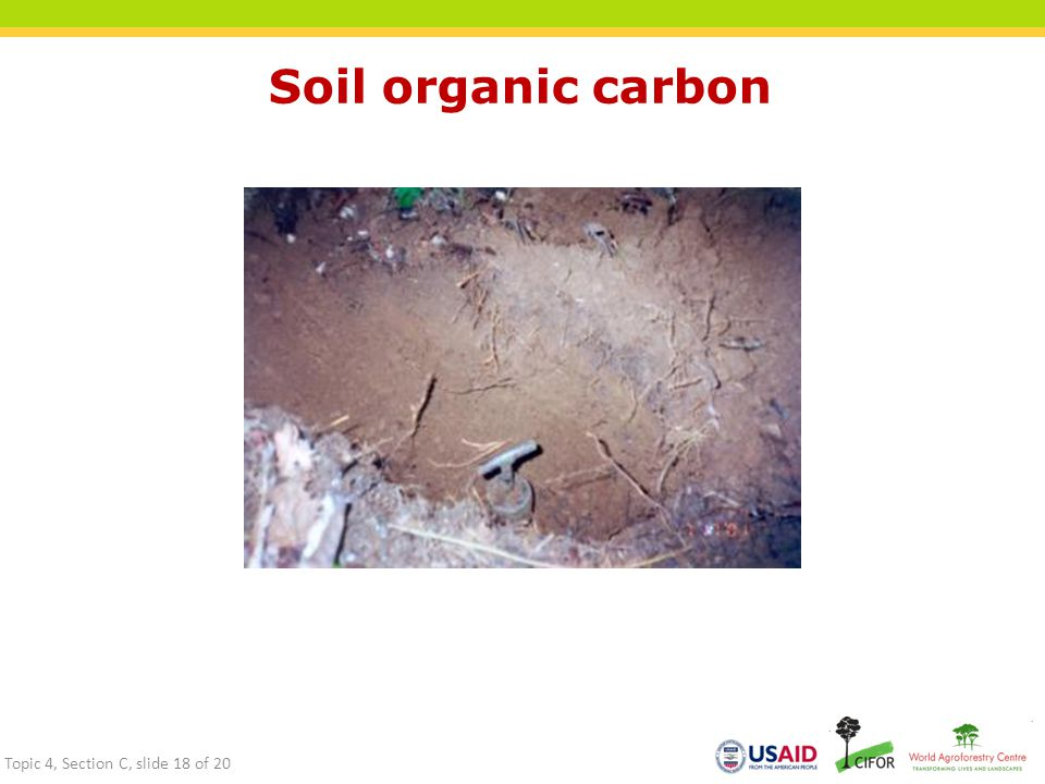 Soil organic carbon Topic 4, Section C, slide 18 of 20