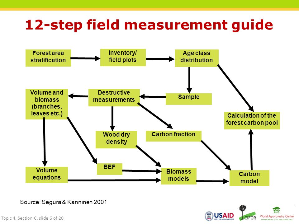 12-step field measurement guide Forest area stratification Inventory/ field plots Age class distribution Sample Destructive measurements Volume and biomass (branches, leaves etc.) Wood dry density Carbon fraction Volume equations BEF Biomass models Carbon model Calculation of the forest carbon pool Source: Segura & Kanninen 2001 Topic 4, Section C, slide 6 of 20