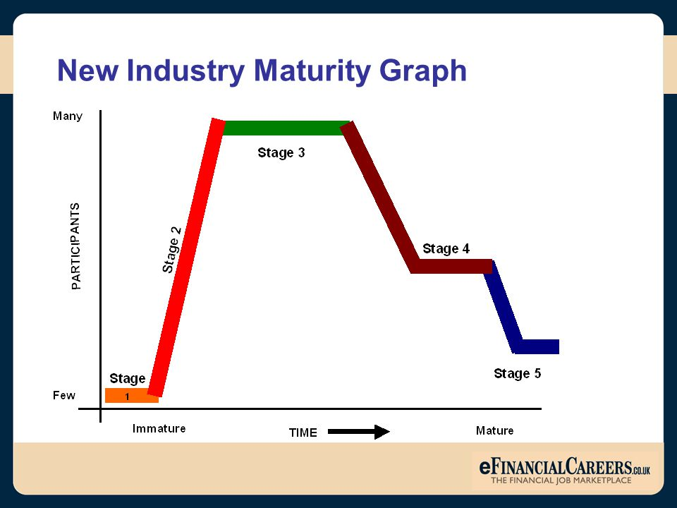 New Industry Maturity Graph