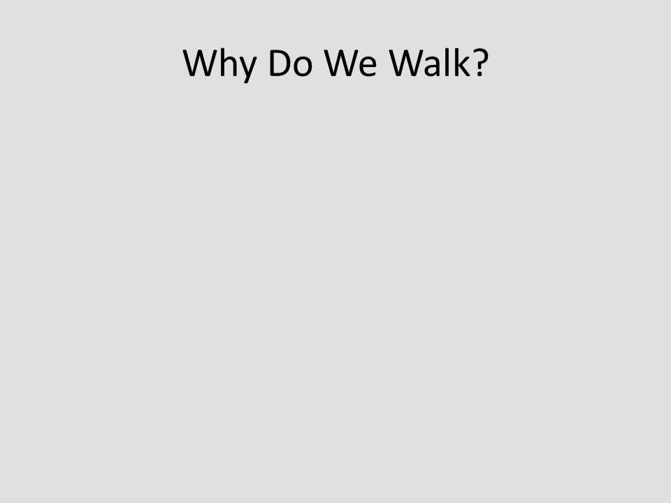 Why Do We Walk?