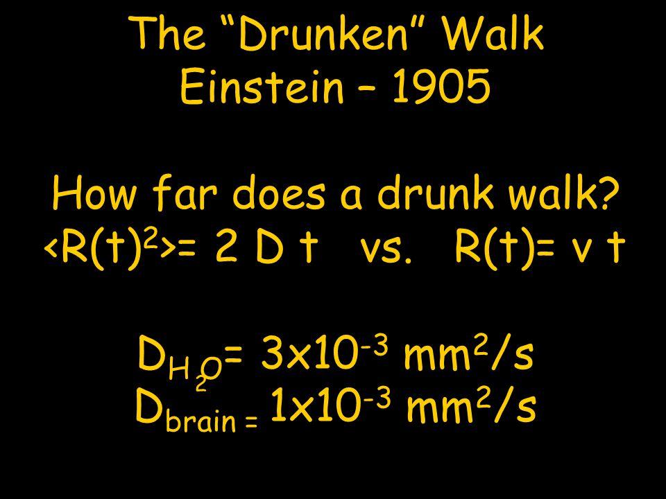 """The """"Drunken"""" Walk Einstein – 1905 How far does a drunk walk? = 2 D t vs. R(t)= v t D H O = 3x10 -3 mm 2 /s D brain = 1x10 -3 mm 2 /s 2"""