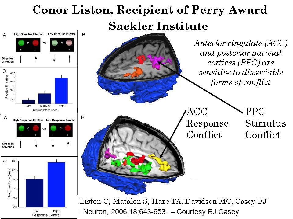 Neuron, 2006,18;643-653. – Courtesy BJ Casey