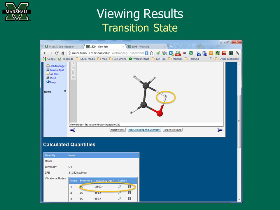 Viewing Results Transition State