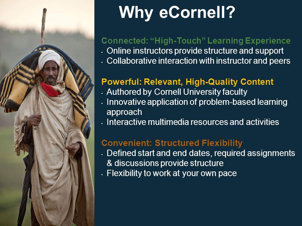 Why eCornell.