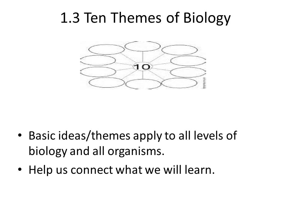 1.3 Ten Themes of Biology Basic ideas/themes apply to all levels of biology and all organisms. Help us connect what we will learn.