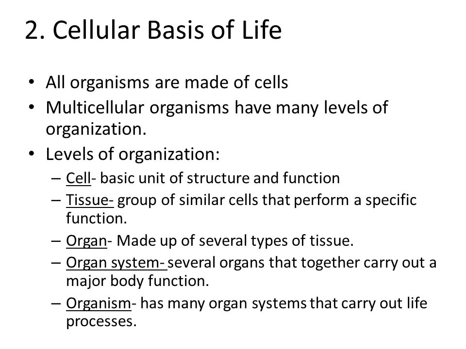 2. Cellular Basis of Life All organisms are made of cells Multicellular organisms have many levels of organization. Levels of organization: – Cell- ba