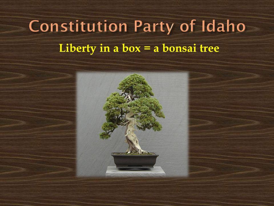 Liberty in a box = a bonsai tree