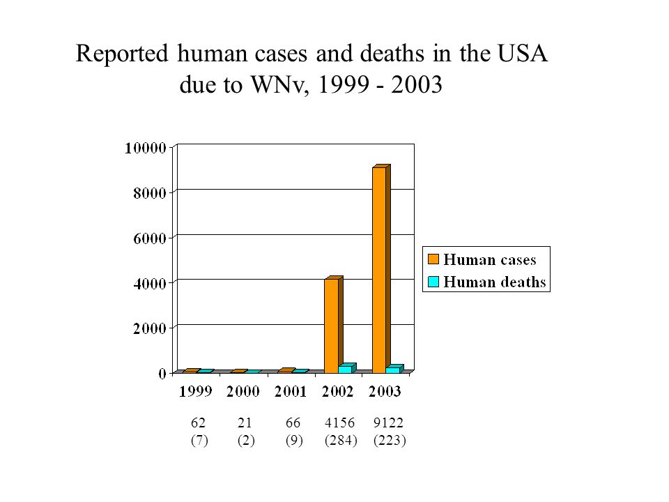 62 (7) 21 (2) 66 (9) 4156 (284) 9122 (223) Reported human cases and deaths in the USA due to WNv, 1999 - 2003