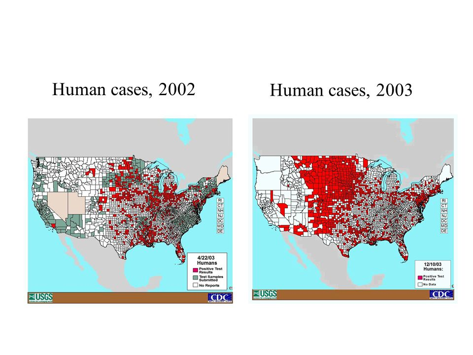 Human cases, 2002 Human cases, 2003