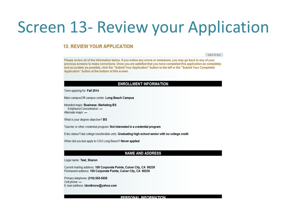 Screen 13- Review your Application