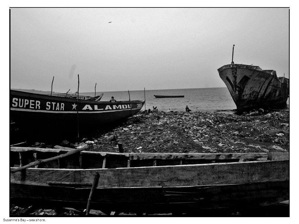 Susanne's Bay – Solid waste on the sea shore. Scrap metal collection.