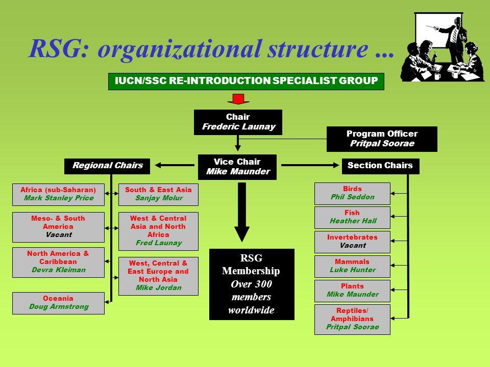 RSG: organizational structure...
