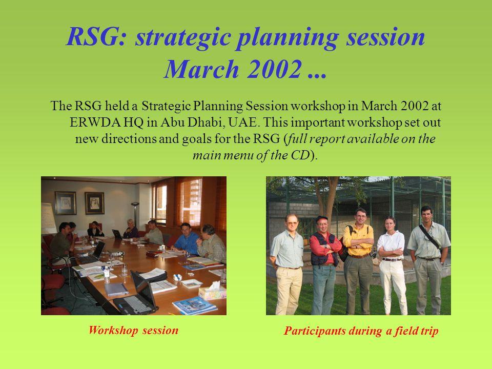 RSG: strategic planning session March 2002...