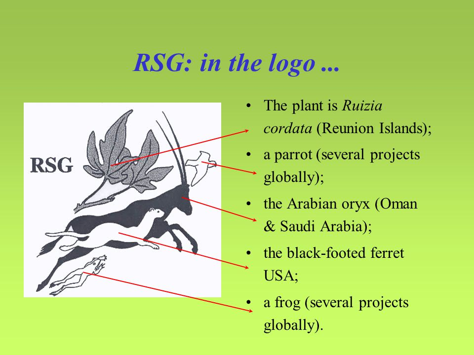 RSG: in the logo...