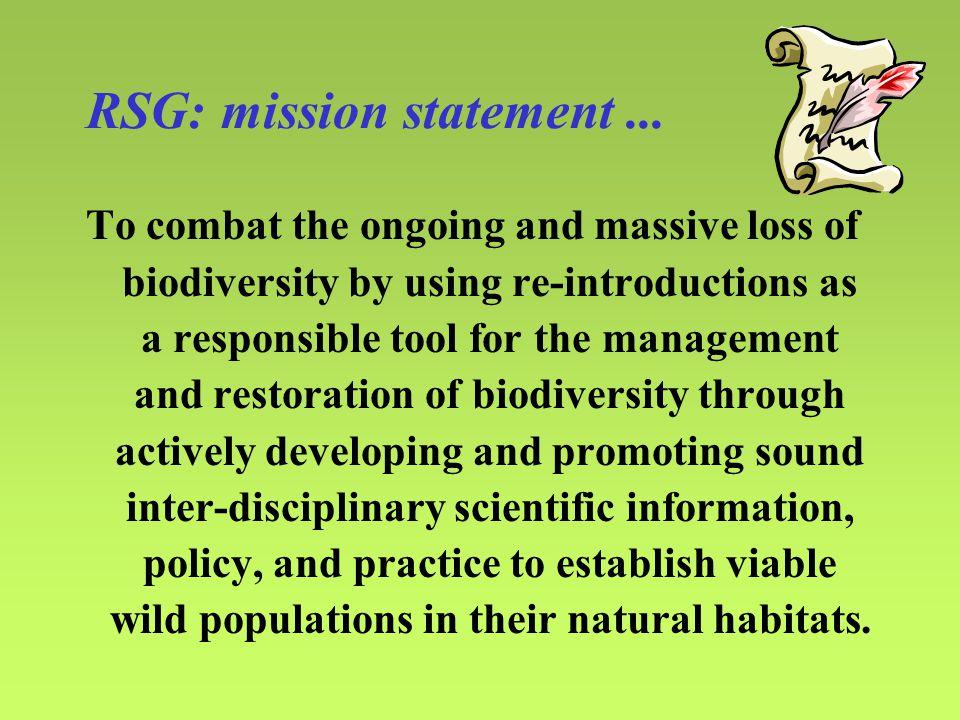 RSG: mission statement...