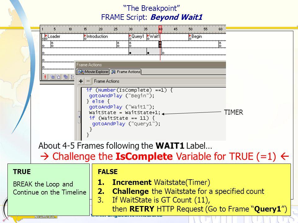 The Breakpoint FRAME Script: Beyond Wait1 About 4-5 Frames following the WAIT1 Label…  Challenge the IsComplete Variable for TRUE (=1)  TRUEFALSE BREAK the Loop and Continue on the Timeline 1.Increment Waitstate(Timer) 2.Challenge the Waitstate for a specified count 3.If WaitState is GT Count (11), then RETRY HTTP Request (Go to Frame Query1 ) TIMER