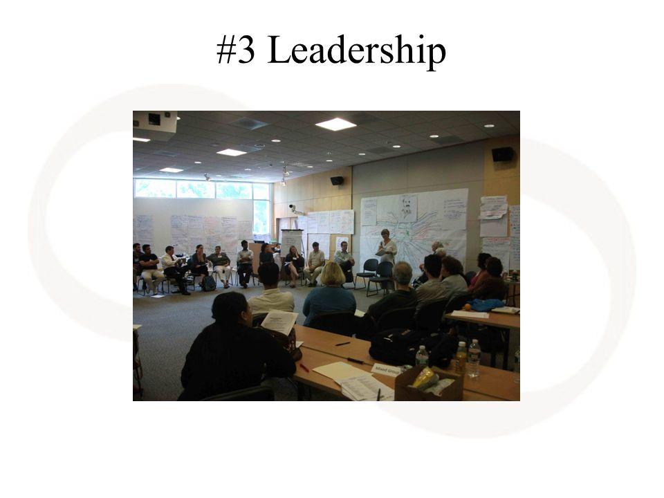 #3 Leadership