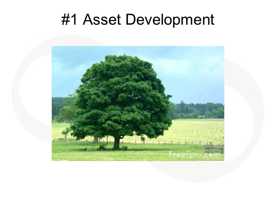 #1 Asset Development