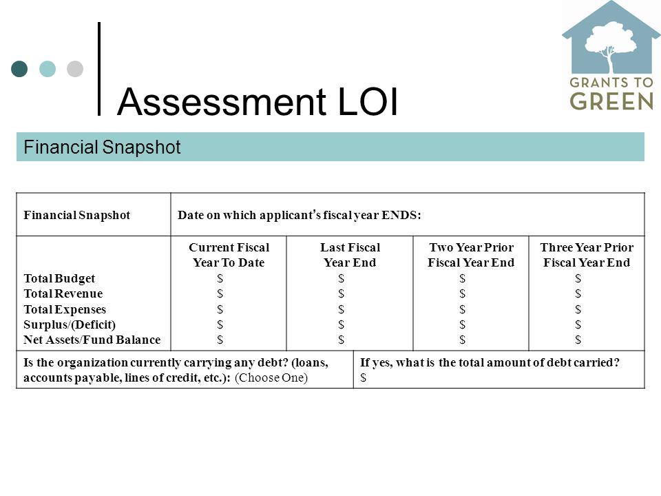 Assessment LOI Financial Snapshot Date on which applicant ' s fiscal year ENDS: Total Budget Total Revenue Total Expenses Surplus/(Deficit) Net Assets/Fund Balance Current Fiscal Year To Date $ Last Fiscal Year End $ Two Year Prior Fiscal Year End $ Three Year Prior Fiscal Year End $ Is the organization currently carrying any debt.
