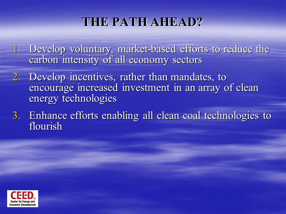 THE PATH AHEAD? 1.Develop voluntary, market-based efforts to reduce the carbon intensity of all economy sectors 2.Develop incentives, rather than mand