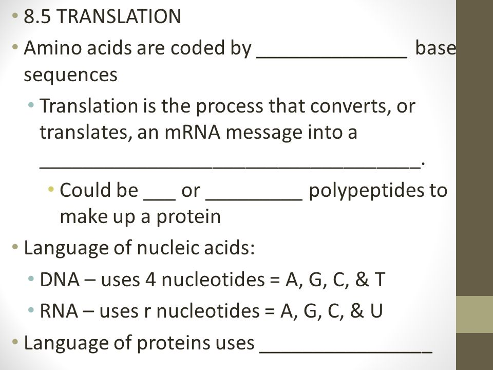 8.5 TRANSLATION Amino acids are coded by ______________ base sequences Translation is the process that converts, or translates, an mRNA message into a