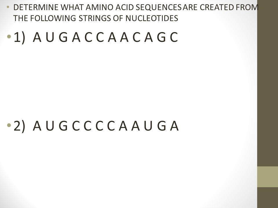 DETERMINE WHAT AMINO ACID SEQUENCES ARE CREATED FROM THE FOLLOWING STRINGS OF NUCLEOTIDES 1) A U G A C C A A C A G C 2) A U G C C C C A A U G A