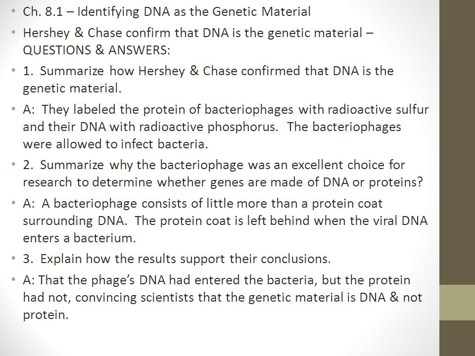 Ch. 8.1 – Identifying DNA as the Genetic Material Hershey & Chase confirm that DNA is the genetic material – QUESTIONS & ANSWERS: 1. Summarize how Her