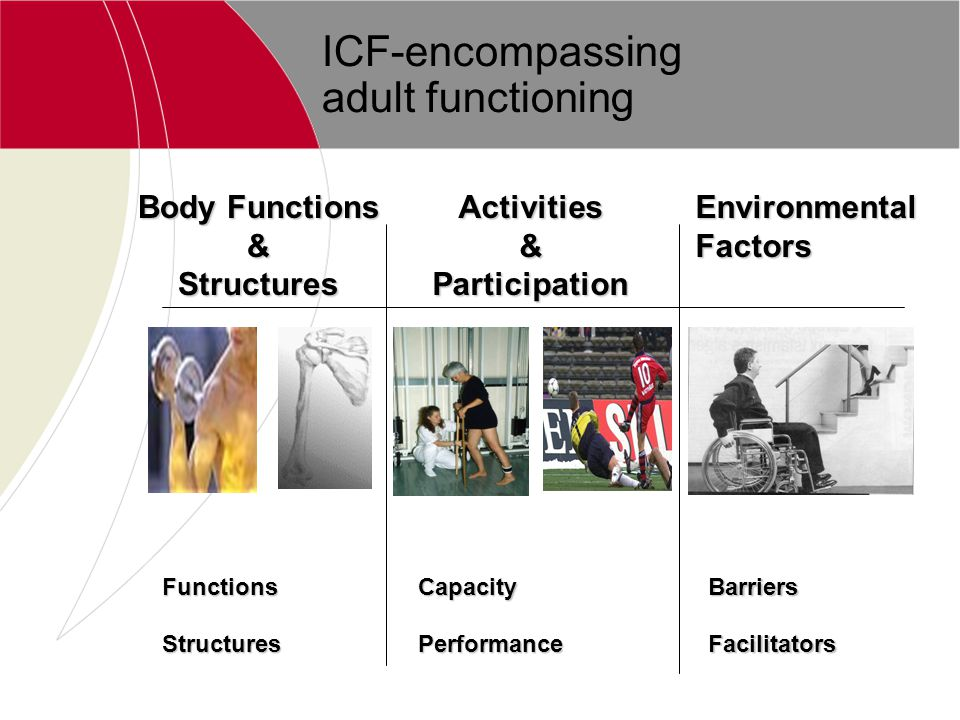 ICF-encompassing adult functioning Body Functions &StructuresActivities&Participation Environmental Factors BarriersFacilitatorsFunctionsStructuresCap