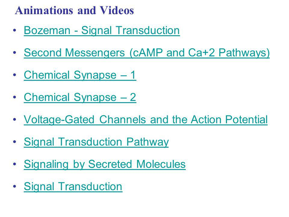 Animations and Videos Bozeman - Signal Transduction Second Messengers (cAMP and Ca+2 Pathways) Chemical Synapse – 1 Chemical Synapse – 2 Voltage-Gated