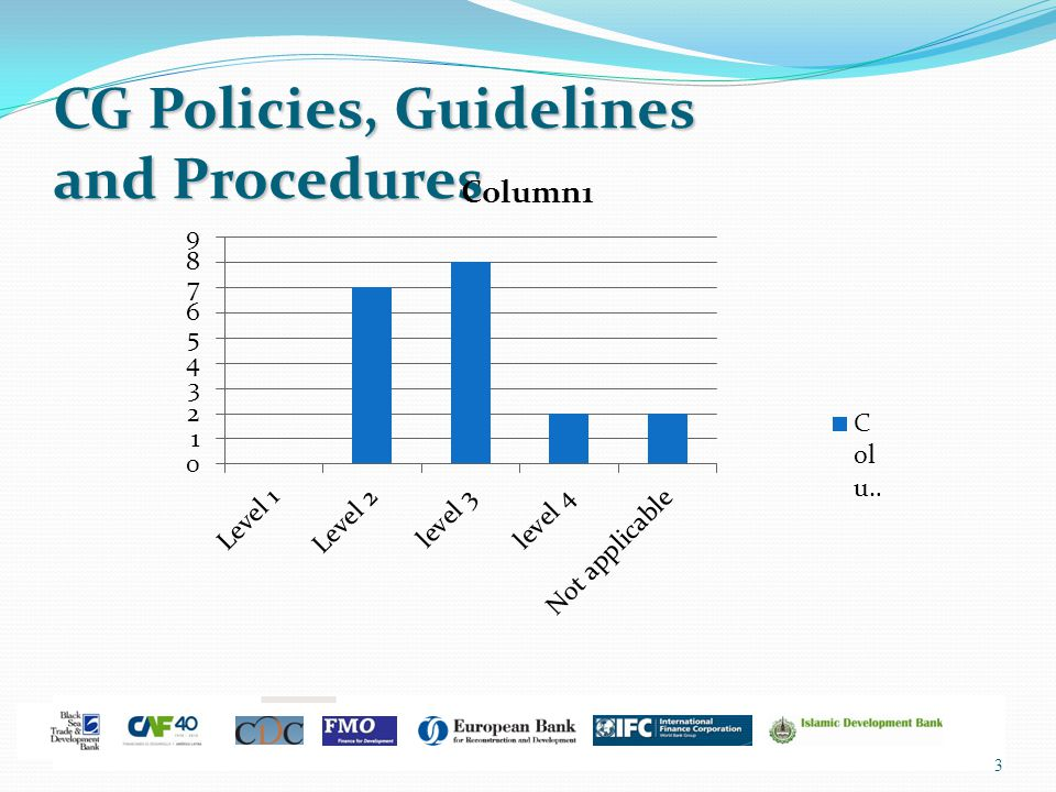 3 CG Policies, Guidelines and Procedures