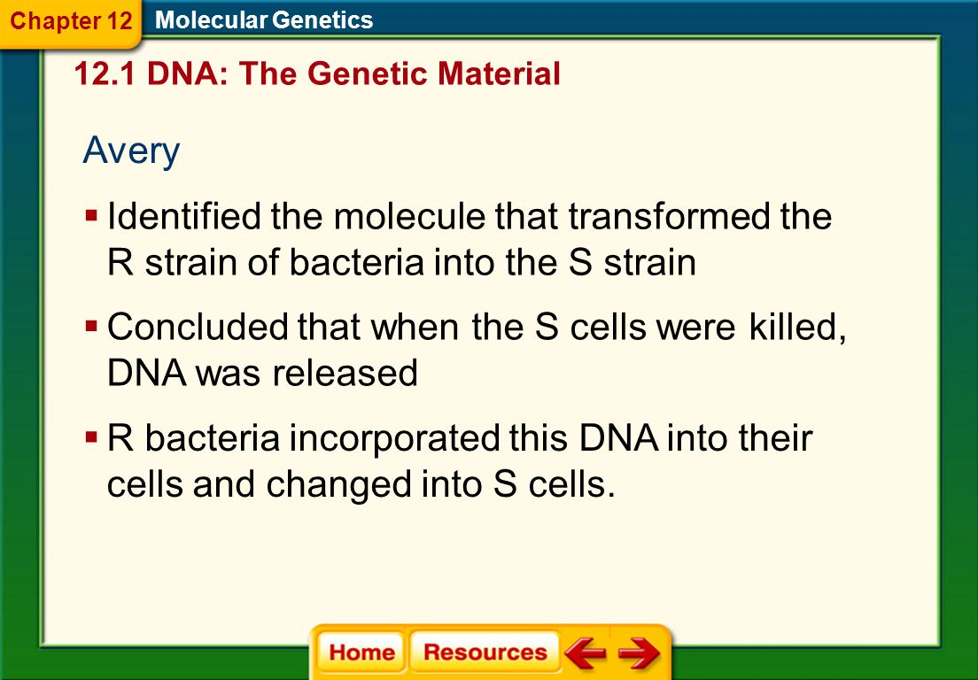 12.1 DNA: The Genetic Material Molecular Genetics Chapter 12 Griffith  Performed the first major experiment that led to the discovery of DNA as the g