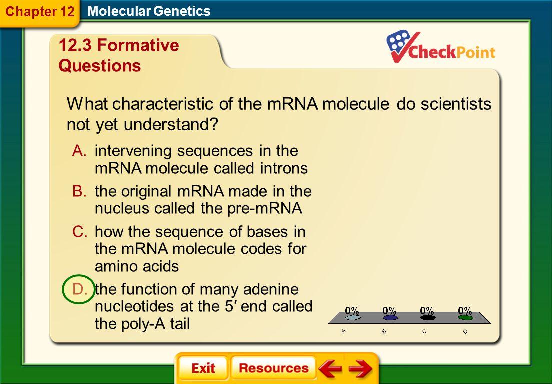 1.A 2.B 3.C 4.D FQ 8 Molecular Genetics Chapter 12 12.3 Formative Questions Which diagram shows messenger RNA (mRNA)? A. C. B. D.