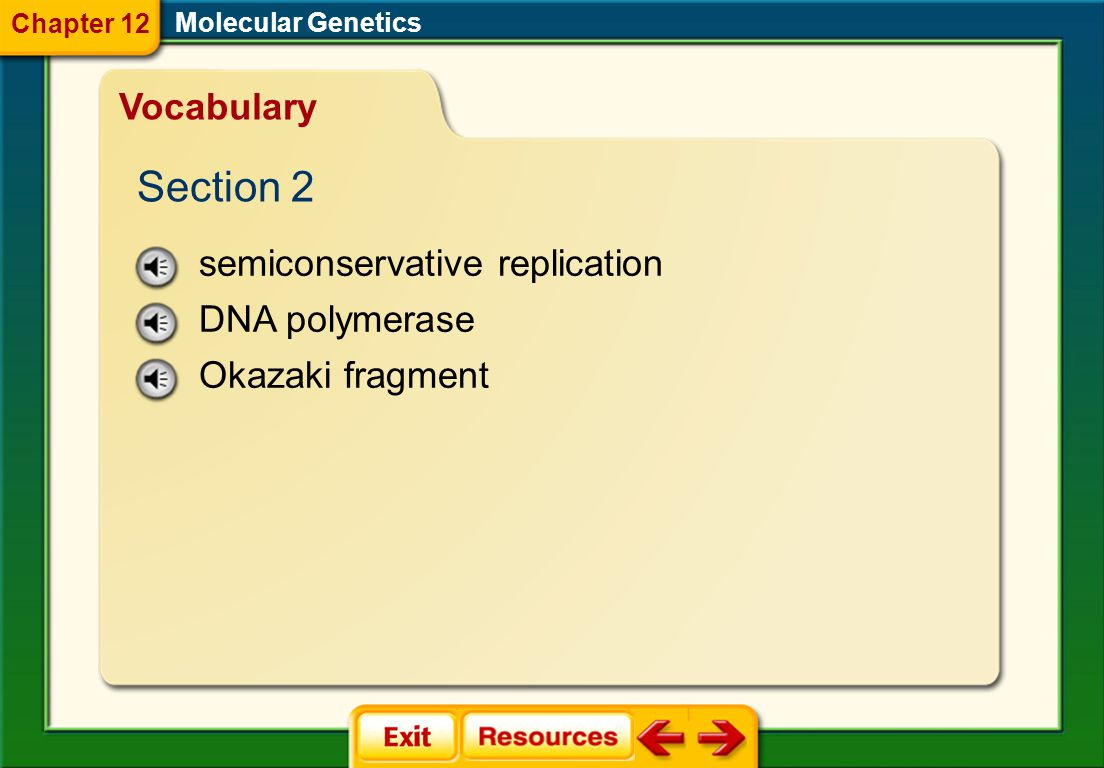double helix nucleosome Molecular Genetics Vocabulary Section 1 Chapter 12