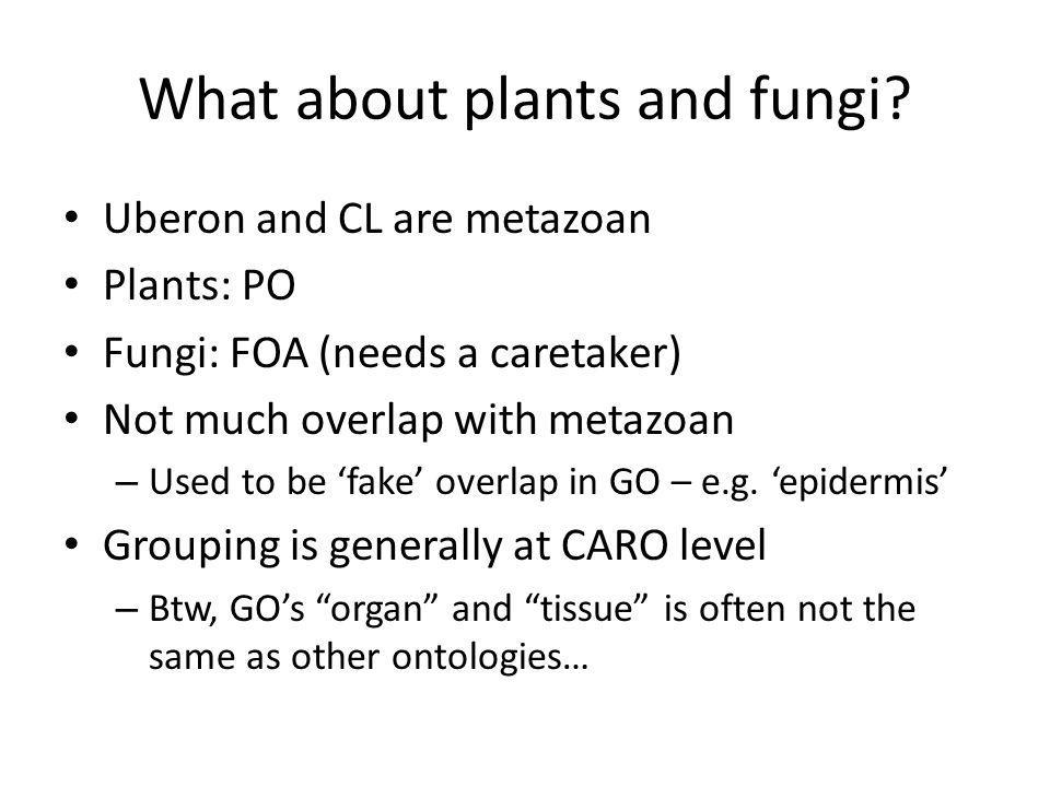 What about plants and fungi.