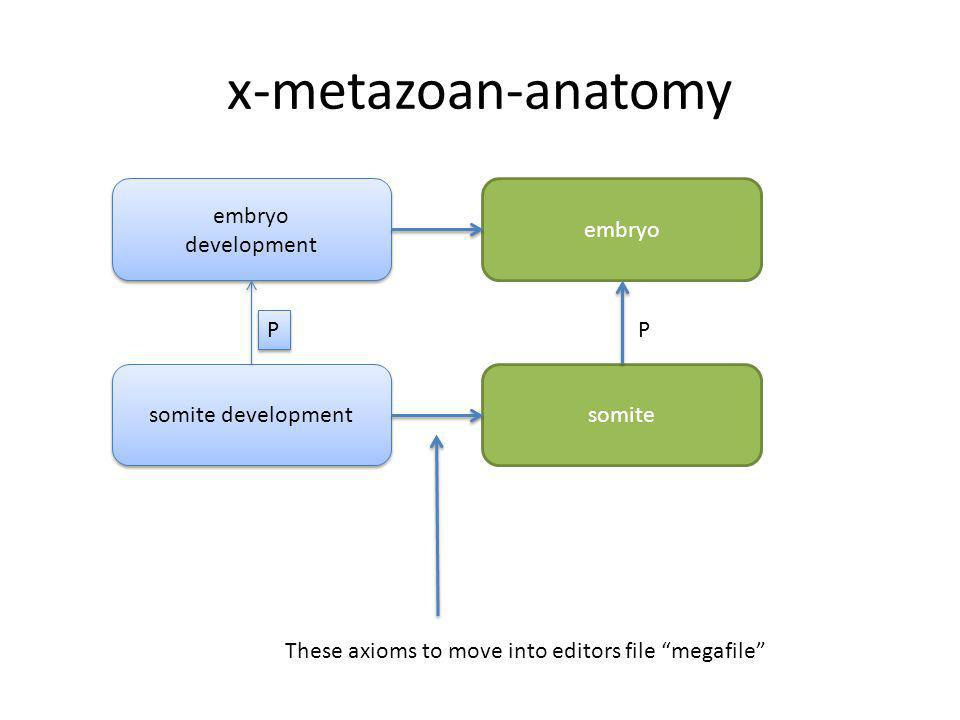 x-metazoan-anatomy somite embryo P somite development embryo development embryo development P P These axioms to move into editors file megafile