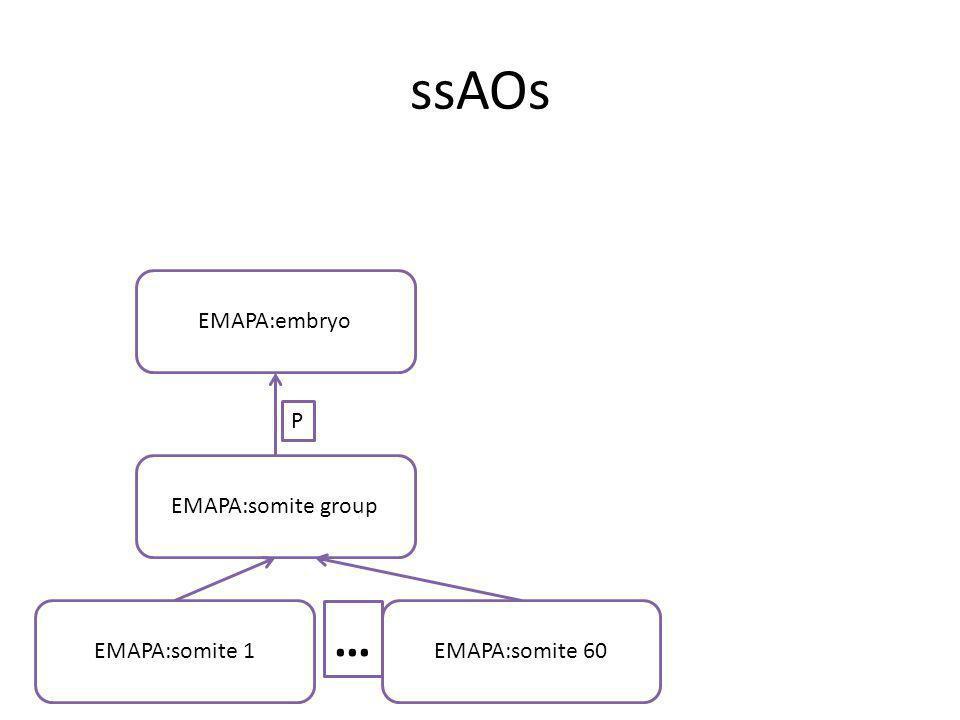 ssAOs EMAPA:somite group EMAPA:embryo P EMAPA:somite 1EMAPA:somite 60 …