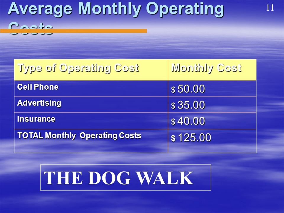 Average Monthly Operating Costs Type of Operating Cost Monthly Cost Cell Phone $ 50.00 Advertising $ 35.00 Insurance $ 40.00 TOTAL Monthly Operating Costs $ 125.00 11 THE DOG WALK