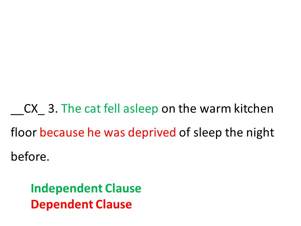__CX_ 3. The cat fell asleep on the warm kitchen floor because he was deprived of sleep the night before. Independent Clause Dependent Clause