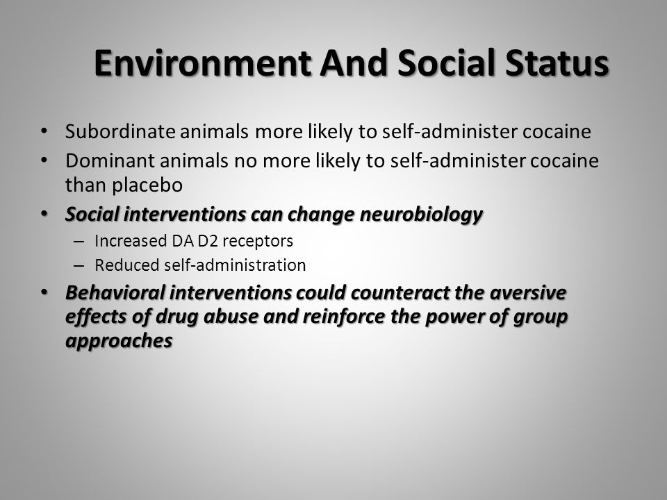 Environment And Social Status Subordinate animals more likely to self-administer cocaine Dominant animals no more likely to self-administer cocaine than placebo Social interventions can change neurobiology Social interventions can change neurobiology – Increased DA D2 receptors – Reduced self-administration Behavioral interventions could counteract the aversive effects of drug abuse and reinforce the power of group approaches Behavioral interventions could counteract the aversive effects of drug abuse and reinforce the power of group approaches