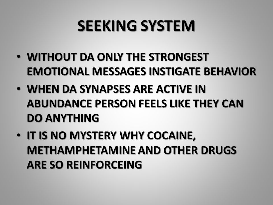 SEEKING SYSTEM WITHOUT DA ONLY THE STRONGEST EMOTIONAL MESSAGES INSTIGATE BEHAVIOR WITHOUT DA ONLY THE STRONGEST EMOTIONAL MESSAGES INSTIGATE BEHAVIOR WHEN DA SYNAPSES ARE ACTIVE IN ABUNDANCE PERSON FEELS LIKE THEY CAN DO ANYTHING WHEN DA SYNAPSES ARE ACTIVE IN ABUNDANCE PERSON FEELS LIKE THEY CAN DO ANYTHING IT IS NO MYSTERY WHY COCAINE, METHAMPHETAMINE AND OTHER DRUGS ARE SO REINFORCEING IT IS NO MYSTERY WHY COCAINE, METHAMPHETAMINE AND OTHER DRUGS ARE SO REINFORCEING