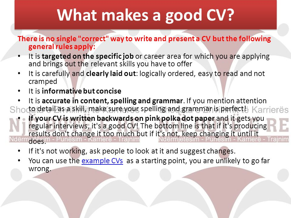 What makes a good CV? There is no single