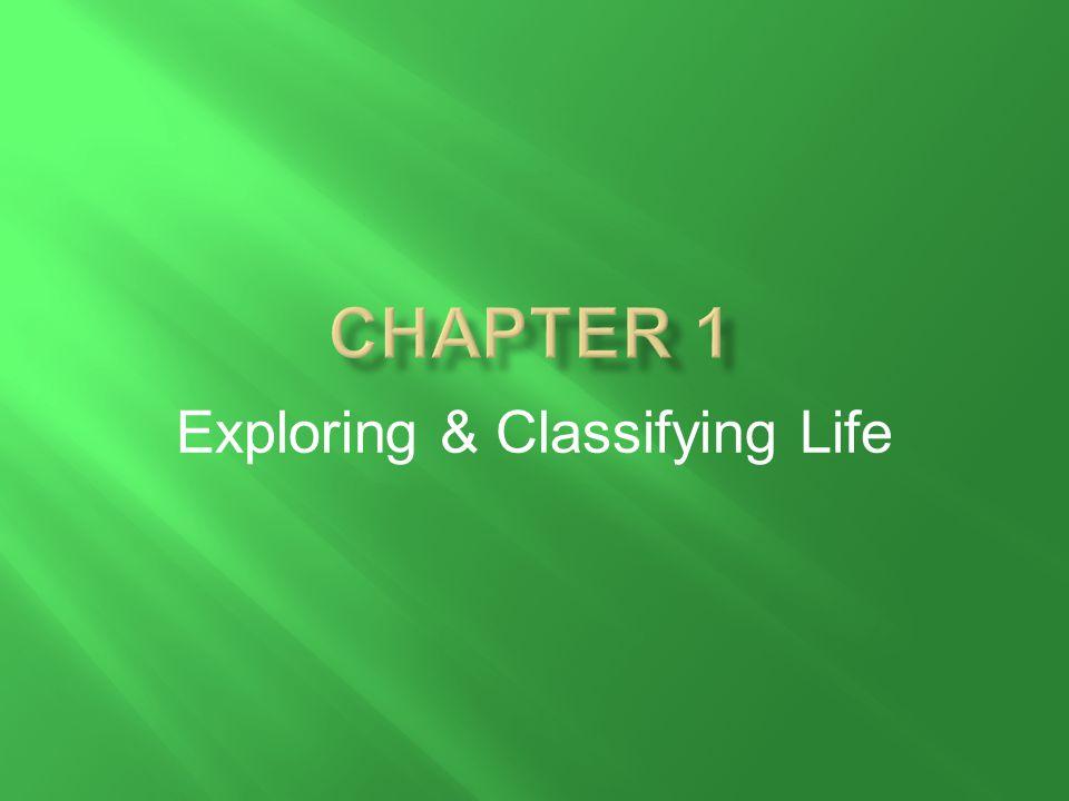 Exploring & Classifying Life