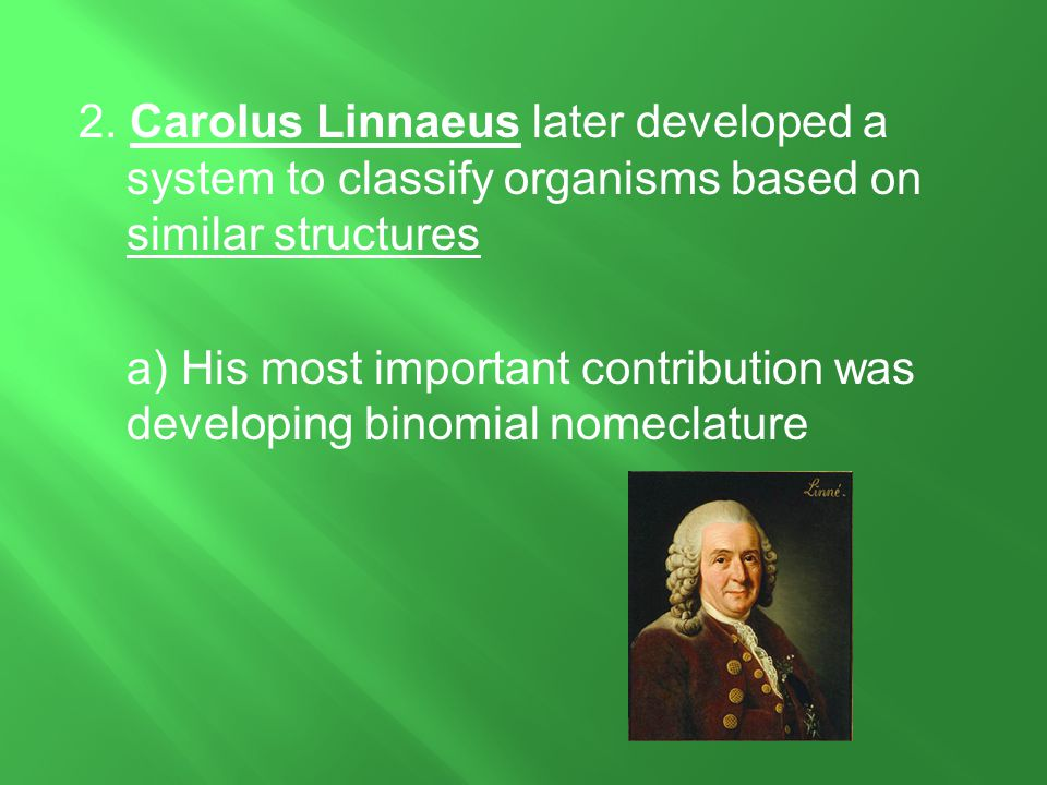 2. Carolus Linnaeus later developed a system to classify organisms based on similar structures a) His most important contribution was developing binom