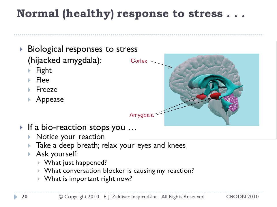 Normal (healthy) response to stress...