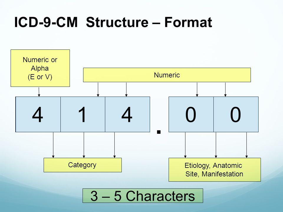 X. ICD-9-CM Structure – Format XXXX5E1400. V Category Etiology, Anatomic Site, Manifestation 4 Numeric or Alpha (E or V) Numeric 3 – 5 Characters