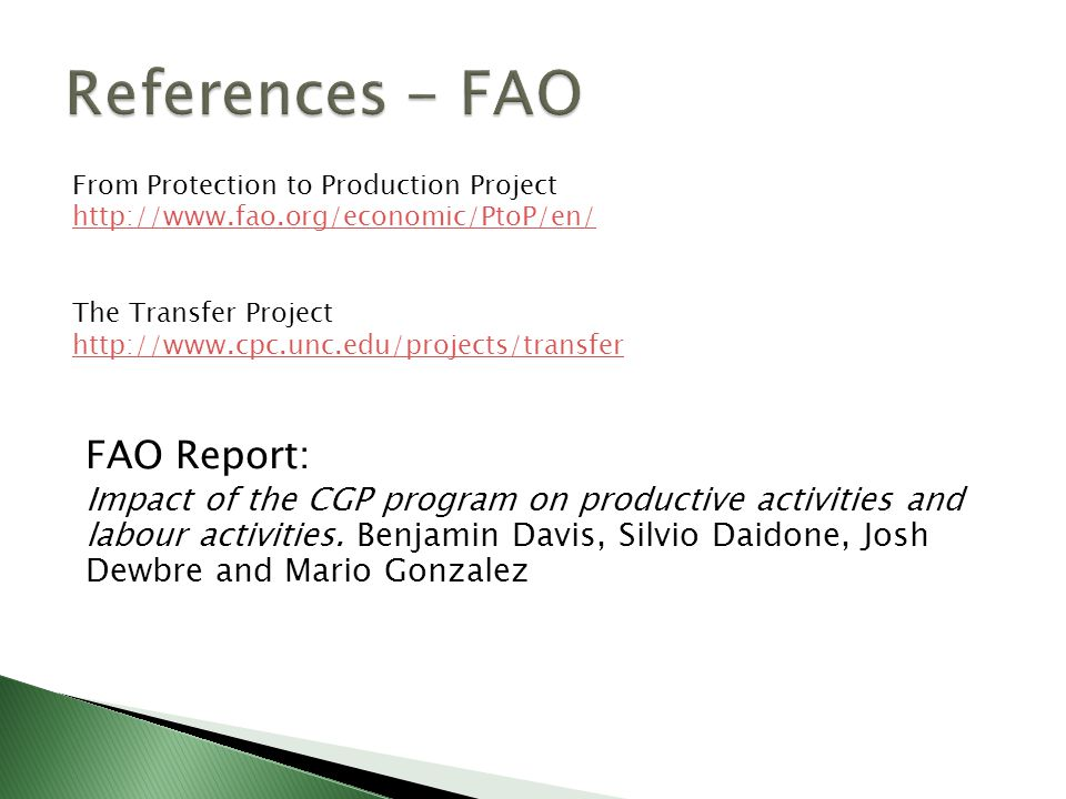 FAO Report: Impact of the CGP program on productive activities and labour activities.